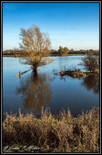 20121114_Cambridgeshire_00034-19-C