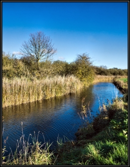 Wicken Lode Cambridgeshire